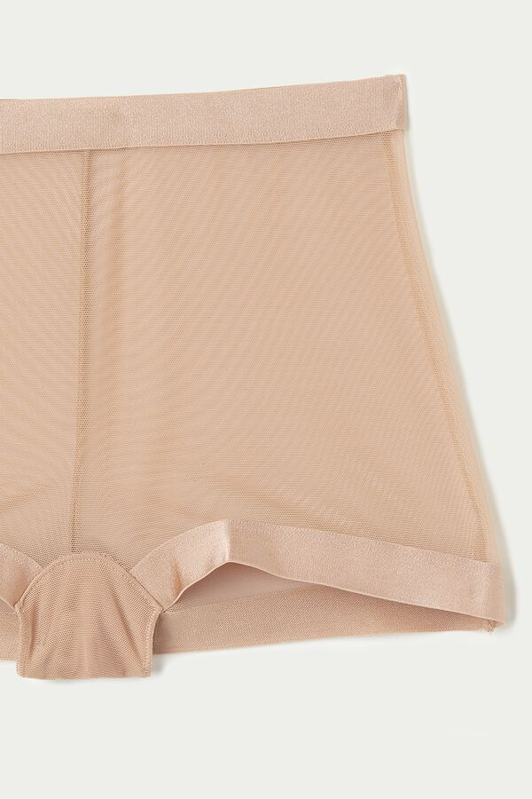 Invisible Mesh High-Waist Tulle French Knickers