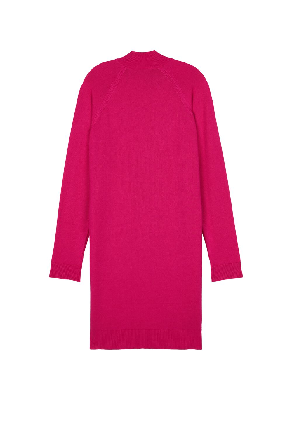 Long-Sleeved High-Neck Dress